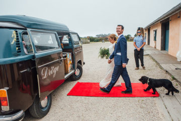 Bride and groom on red carpet with dog