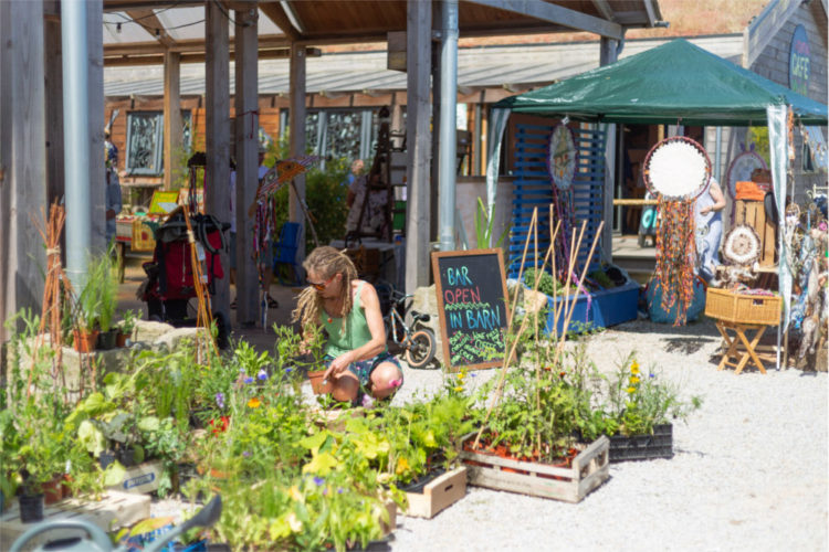 Roots Culture Summer Market September Cornwall