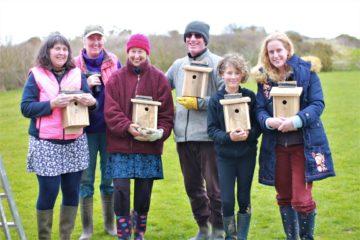 volunteer wooden bird boxes